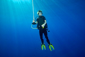 Diver hanging on a line at 15 feet for a decompression stop before surfacing. Kauai, Hawaii. March 2016. Model released.  -  David Fleetham