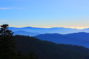 View from Clingmans Dome car park, Tennessee, November 2017  -  Oliver Hellowell