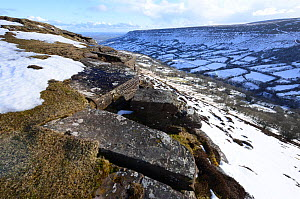 Snow in the Olchon Valley, a U-shaped valley with shattered rocks belonging to the Senni Formation of Devonian Old Red Sandstone. Cat's Back, Black Mountains, Herefordshire, England, UK. March, 20...  -  Will Watson