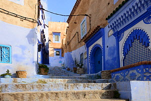 Alleyway between buildings in Chefchaouen, known as The Blue Pearl of Morocco, Chefchaouen Province, Morocco. April 2018.  -  Will Watson
