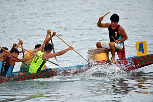 Training for the Hong Kong Dragon Boat Festival, also known as the Tueng Ng Festival, is one of the favourites of Chinese Festivals celebrated in the territory. Sai Kung, Hong Kong, China. June, 2016.  -  Magnus Lundgren / Wild Wonders of China
