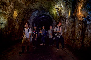 Group of herpetologists exploring an underground water catchment tunnel, Shek Pik, Lantau Island, Hong Kong, China. June, 2016.  -  Magnus Lundgren / Wild Wonders of China