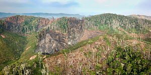Deforestation of mid-altitude rainforest, high angle view. Near Andasibe-Mantadia National Park, eastern Madagascar. October 2017. - Nick Garbutt