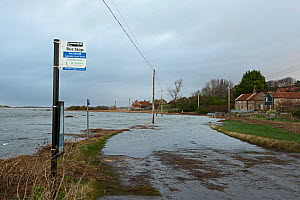 A149 coast road at Salthouse on North Norfolk, England, UK. Coast flooded after Friday January 13th 2017 North Sea surge - David Tipling