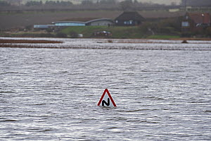 View across Cley Marshes from West Bank with Coastguards road sign submerged in flood waters, North Norfolk, England, UK. January 13th 2017. - David Tipling