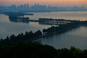 Tree lined causeway over lake, East Lake Greenway park, with the Wuhan skyline behind, Hubei, China. June 2018 - Staffan Widstrand / Wild Wonders of China