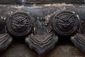 Tiger or owl faces in roof tiles. Details from the Yong An Si temple, now a museum, Beiyue Hengshan Mountain, Datong, Hunyuan County, Shanxi Province, China - Staffan Widstrand / Wild Wonders of China
