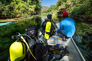 Scouting the river on a small boat driven by an electric motor ready to dive, Formoso River, Bonito, Mato Grosso do Sul, Brazil  -  Franco  Banfi