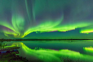 Aurora Borealis reflected in Polar Lake, near Great Slave Lake, Northwest Territories, Canada. September 2018. - Jack Dykinga