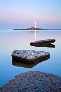 Calm sea with St Mary's Lighthouse in distance, Whitley Bay, Tyne and Wear, England, UK, February 2008.  -  Guy Edwardes