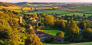 Corton Denham Village, Somerset, England, UK, July 2007. - Guy Edwardes