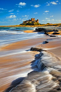 Bamburgh Castle, Northumberland, England, UK, March 2009.  -  Guy Edwardes