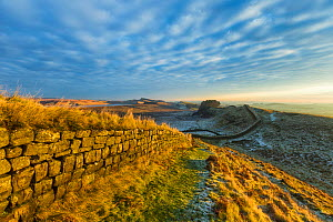 Hadrian's Wall, Northumberland, England, UK. December 2012 - Guy Edwardes