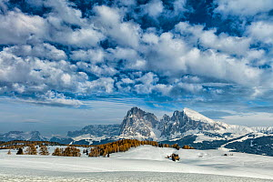 Landscape of Alpe di Siusi, Dolomites, Italy, March 2016. - Guy Edwardes