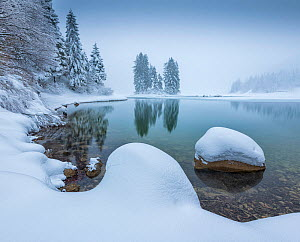 Shore of Lago de Predil covered in snow, Italy, February 2018 - Guy Edwardes