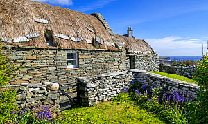 Croft House Museum, restored straw-thatched cottage at Boddam, Dunrossness, Shetland Islands, Scotland, UK, May 2018  -  Philippe Clement