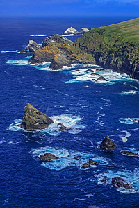 Spectacular coastline with sea cliffs and stacks, home to breeding seabirds at Hermaness, Unst, Shetland Islands, Scotland, UK, May - Philippe Clement