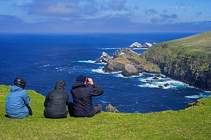 Birdwatchers watching coastline with sea cliffs and stacks, home to breeding seabirds at Hermaness, Unst, Shetland Islands, Scotland, UK, May - Philippe Clement