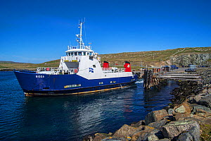 Bigga, passenger and car ferry that operates on Bluemull sound service, SIC Ferries leaving Belmont on Unst, Shetland Islands, Scotland, UK, 2018 - Philippe Clement