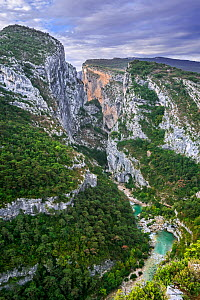 River Verdon at Point Sublime, start of the Sentier Martel in the Gorges du Verdon / Verdon Gorge canyon, Provence-Alpes-Cote d'Azur, France, September 2018  -  Philippe Clement