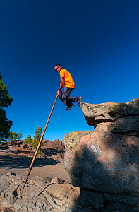 The Canarian Shepherd's Leap, a local tradition of walking and leaping across landscape using a pole. Salto del pastor canario, Tirajana ravine, Gran Canaria Island, The Canary Islands. August 201...  -  Juan  Carlos Munoz