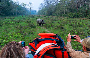 Tourists on safari taking pictures of One-horned Asian rhinoceros (Rhinoceros unicornis), Chitwan National Park, Nepal, February 2018. - Juan  Carlos Munoz