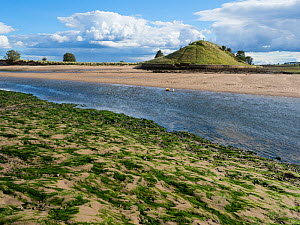 Church Hill at Alnmouth, Northumberland, England, UK. September 2017. - Gary  K. Smith