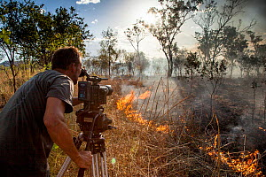 Cameraman Murray Fredericks films a wildfire triggered by lightning for Storm Chasing programme in Northern Australia for BBC Wonders of The Monsoon. Western Australia. December 2013.  -  Paul Williams