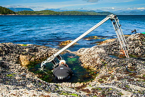 Using a specialist motion control rig to film underwater timelapse in a rockpool. On production for BBC Blue Planet II, Vancouver island, British Columbia, Canada, July.  -  Paul Williams