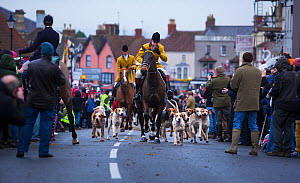 Hunt master and his hounds lead out England's oldest fox hunt - the Berkeley Hunt - from the town of Thornbury, Gloucestershire, England, UK. 26th December 2014. Winner of the Portfolio Category o... - Neil Aldridge