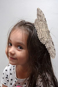 Girl with a large White Witch moth (Thysania agrippina) on her head. Iquitos, Peru. Model released. - Mark  Bowler