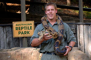 Herpetologist holding a Carpet or Diamond Python (Morelia spilota), The Australian Reptile Park, Gosford, New South Wales, Australia. April. (Editorial use only) - Steven David Miller