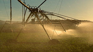 Large scale agricultural irrigation of a vegetable farm, Atherton Tablelands, Queensland, Australia.  -  Jurgen Freund