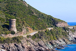 Tower of l'Osse on coast, Cagnano, Cap Corse, Haute-Corse, France. May 2017. - Mike Read