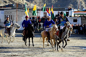 Men riding ponies at a polo tournament in Leh city at 3520 meters altitude, Ladkh, India. September 2018. - Enrique Lopez-Tapia