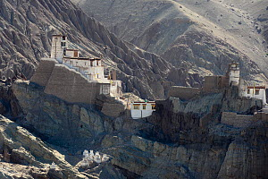 Buddhist temple of Choskor at 3100 meters altitude, village of Alchi, Indus valley. Ladakh, India, September 2018. - Enrique Lopez-Tapia
