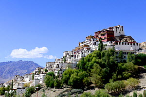 Thikshey monastery,at 3260 meters altitude, a Tibetan Buddhist gompa, Indus River, Ladakh, , India, September 2018. - Enrique Lopez-Tapia