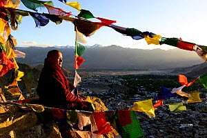 Monk with at Thikshey monastery with prayer flags, at 3260 meters of altitude, Ladakh, India, September 2018. - Enrique Lopez-Tapia