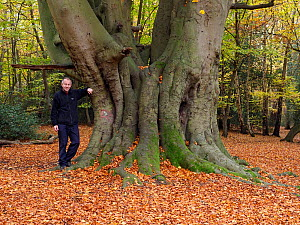 Photographer Andy Sands with Beech Tree (Fagus sylvatica) ancient coppard - old coppice stool that was then pollarded and has since not been cut for several generations self portrait to show scale, Es...  -  Andy Sands