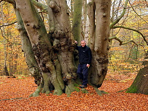 Beech Tree (Fagus sylvatica) ancient coppice stool uncut for several generations self portrait to show scale, Essex, England, UK, November  -  Andy Sands