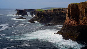 Wide-angle shot of sea cliffs and stacks, Hermaness NNR, Unst, Shetland Islands, Scotland, UK, May. - Philippe Clement