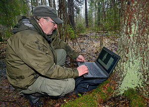 Researcher reviewing trailcam footage on laptop of Siberian flying squirrel (Pteromys volans) emerging from nest hole in Aspen (Populus tremula) tree at night. Mature mixed forest, near Lisaku, Estoni...  -  Nick Upton