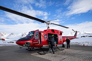Air Greenland helicopter used for Kulusuk to Tasiilaq flights. East Greenland. April 2018.  -  Franco  Banfi