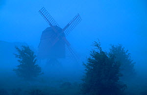 Windmill and trees silhouetted in fog, . Oland, Gotland, Sweden. June.  -  Pal Hermansen