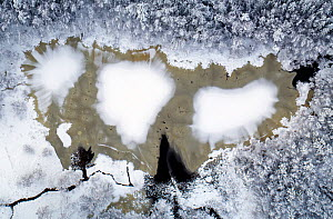 First snow on winter on frozen lake surrounded by trees, aerial view. Akershus, Norway. December 2018.  -  Pal Hermansen