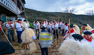 Men in traditional costumes with sheep skins celebrating 'Las Marzas' celebration, Soba Valley, Cantabria, Spain. March 2017.  -  Juan  Carlos Munoz