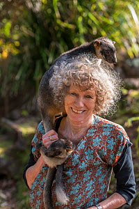 Wildlife carer Margit Cianelli with Lumholtz tree kangaroo (Dendrolagus lumholtzi) 'Kimberley' on her shoulder. Lumholtz Lodge, Atherton Tablelands, Queensland, Australia. Model released.  -  Jurgen Freund