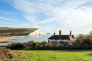 The Seven Sisters chalk cliffs. East Sussex, England, UK. November 2017.  -  John Waters