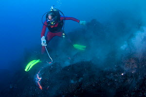 Diver sampling red hot pillow lava at underwater eruption of Kilauea Volcano, Hawaii. - Doug Perrine