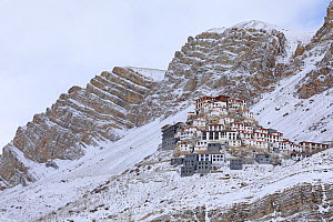 Key monastery in the snow, Spiti valley, Cold Desert Biosphere Reserve, Himalaya mountains, Himachal Pradesh, India, February - Oriol  Alamany
